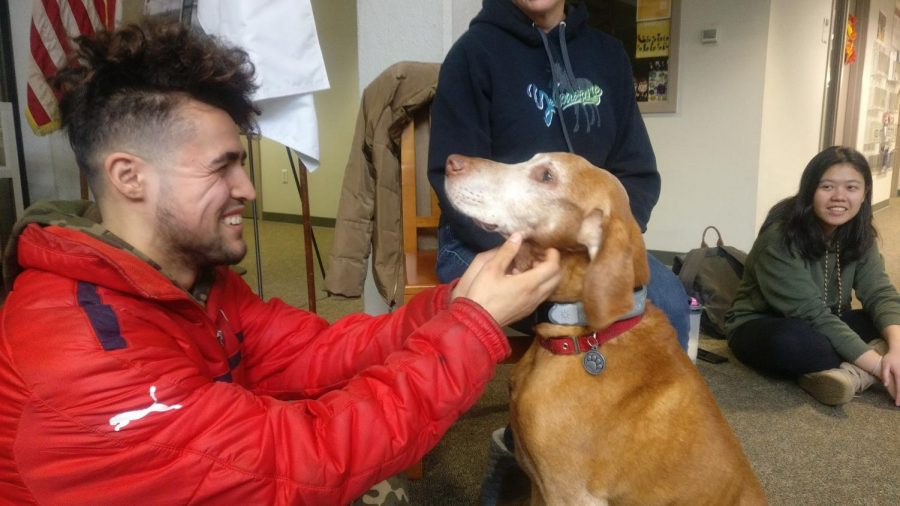 A+BCC+student+greets+a+therapy+dog+during+Anti-Stress+Week.%0APhoto+by+Corine+Tamayo%0A%0A