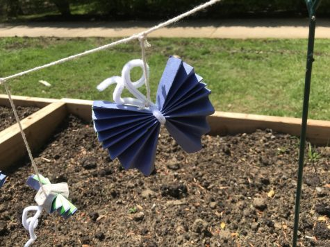 Dreamers+ Crafts Butterflies to Support Immigrants